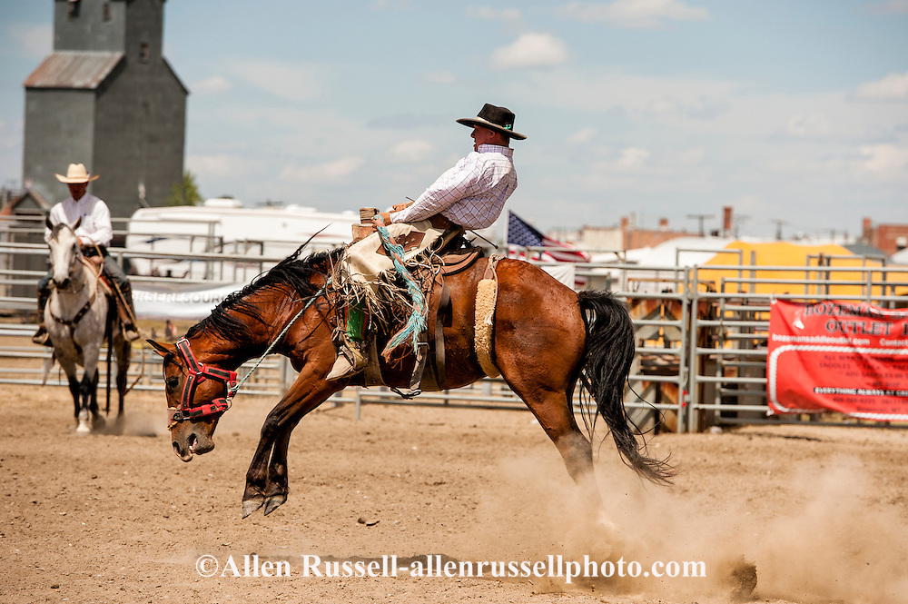 Will James Roundup, Ranch Rodeo, Ranch Bronc Riding, Cody Williams, Hardin, Montana, MODEL RELEASED