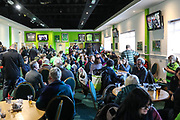 The Green Man during the EFL Sky Bet League 2 match between Forest Green Rovers and Morecambe at the New Lawn, Forest Green, United Kingdom on 17 November 2018.
