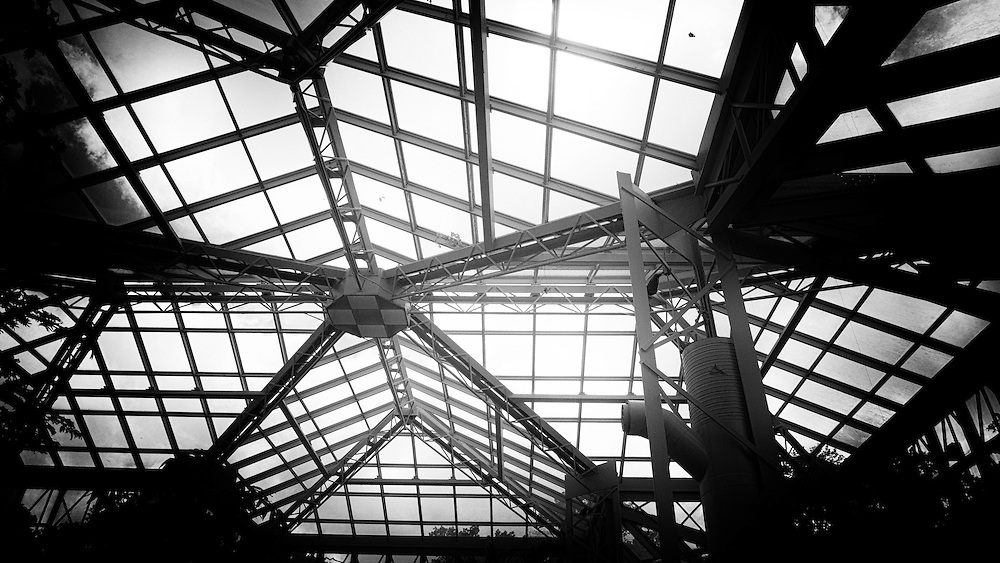 This black-and-white photography created by fine art and commercial photographer Dominique James shows details of the glass and metal ceiling of the  Cecil B. Day Butterfly Center. This architectural structure is a butterfly conservatory located at the Callaway Gardens in Pine City, Georgia.