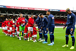 Mascot - Rogan/JMP - 30/11/2019 - Ashton Gate Stadium - Bristol, England - Bristol City v Huddersfield Town - Sky Bet Championship.