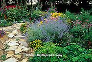 63821-09509 Rock Path in flower garden with Columbines (Aquilegia sp.), Russian Sage (Perovskia atriplicifolia), Cigar Plant (Cuphea ignea), Red & Pink Bee Balm (Monarda didyma), Hollyhocks (Alcea rosea), Angelonia Angel Mist (Angelonia angustifolia), Million Gold Melampodium (Melampodium sp.), Indian Summer Black-eyed Susans (Rudbeckia hirta)  Marion Co.  IL
