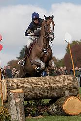 Livio Maxime, FRA, Vegas Des Boursons<br /> World Championship Young Eventing Horses<br /> Mondial du Lion - Le Lion d'Angers 2016<br /> © Hippo Foto - Dirk Caremans<br /> 22/10/2016