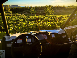 Images from a 4x4 buggy tour and wine tasting at Chateau des Selves, Provence Cote d'Azur, France © Lee Irvine, PelicanImages 2017