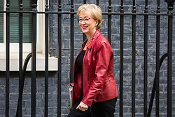 London, UK. 30th April 2019. Andrea Leadsom MP, Lord President of the Council and Leader of the House of Commons, arrives at 10 Downing Street for a Cabinet meeting.