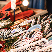 A selection of fresh fish on display at the Karakoy Fish Market in Istanbul near the Galata Bridge.