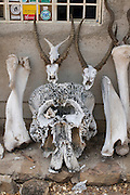 Elephant and gazlle bones before the headquarter of the Mago National Park, Omovalley,Ethiopia,Africa