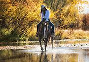 Riding Up a Stream in Fall, Idaho