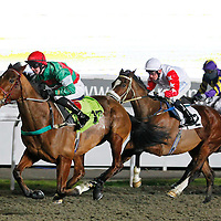 Time Square and Joey Haynes winning the 7.00 race