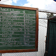 The betting results board during the 50th Anniversary Glenorchy Race meeting. The races, which originally started in the 1920's, were resurrected in 1962 and have been run by local farmers and the rugby club on the first Saturday after New Years Day ever since. Glenorchy, Otago, New Zealand. 7th January 2012