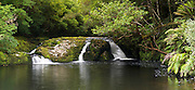 Panoramic view of the Tautuku River downstream from McLeans Falls, Catlins Forest, Clutha, New Zealand