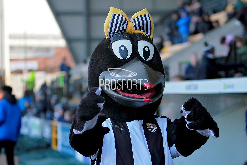 Nott's County mascot before the EFL Sky Bet League 2 match between Notts County and Stevenage at Meadow Lane, Nottingham, England on 24 February 2018. Picture by Nigel Cole.