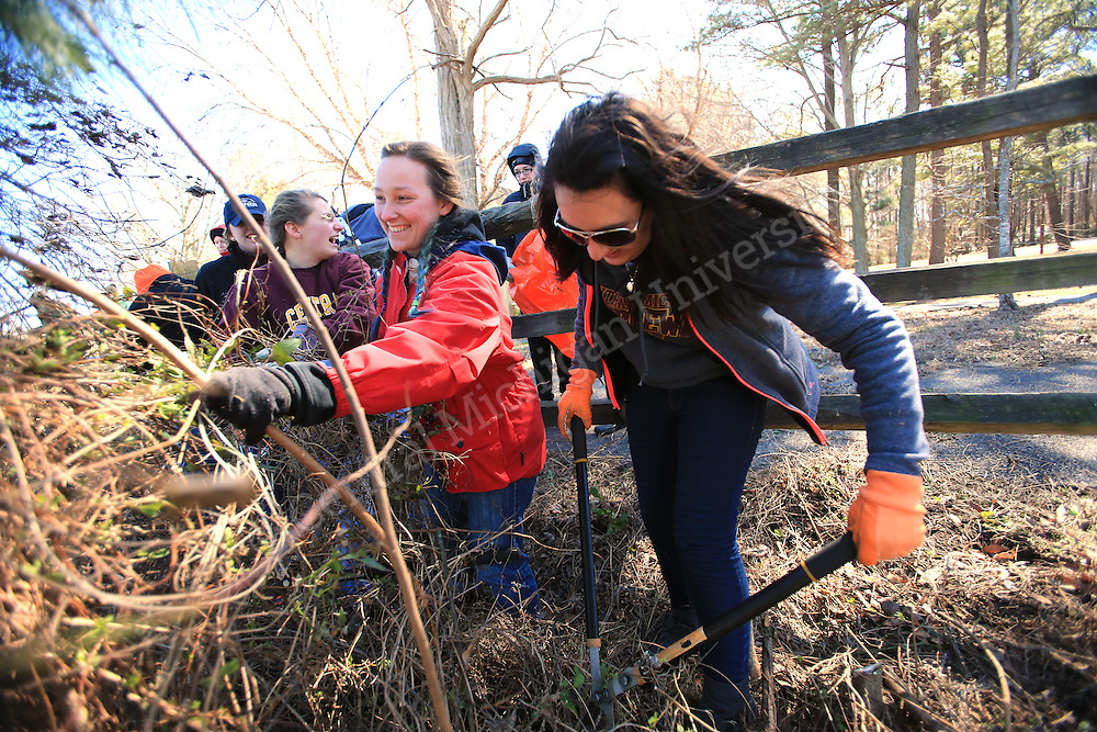 Chelsea Niles, of Laingsburg, (left) and Angela Gucciardo, of Woodhaven, (right) clean up overgrown vegetation along the James River. Chippokes Plantation State Park in Surry, Va., has been the destination for a state park preservation project for 10 Central Michigan University students this week on their Alternative Break. They have been doing garden work, trail and building maintenance and cleanup at the state park on the James River. At the end of the work day they meet in their residence, once a former slave cabin, to reflect on the highs and lows of the day's experience. Photo by Steve Jessmore/Central Michigan University