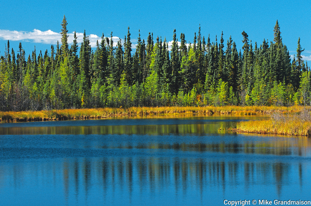 Lake in boreal forest<br /> near Ft. Smith<br /> Northwest Territories<br /> Canada
