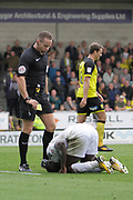 Referee Stephen Martin awards Fulham striker Sheyi Ojo (19) a yellow card for diving during the EFL Sky Bet Championship match between Burton Albion and Fulham at the Pirelli Stadium, Burton upon Trent, England on 16 September 2017. Photo by Richard Holmes.