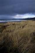 Storm clouds and beach grass at Nesika Beach along the Oregon Coast. Southern Oregon Coast