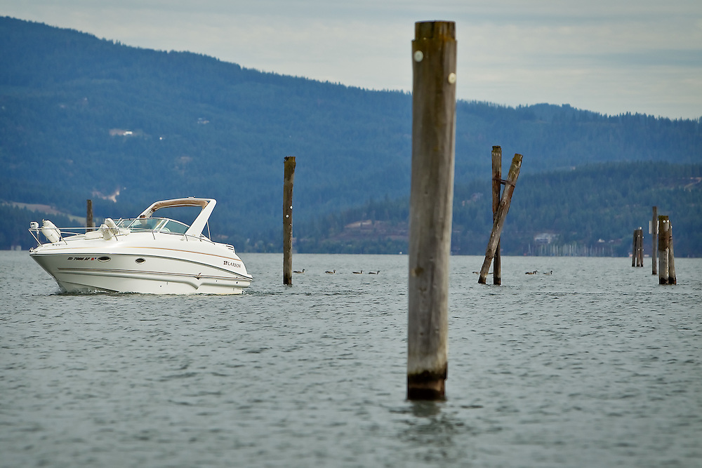 A boater navigates that pilings Tuesday at the mouth of the Spokane River as he leaves Lake Coeur d'Alene. Kootenai County will remove the log pilings and booms from the Spokane River beginning in October.