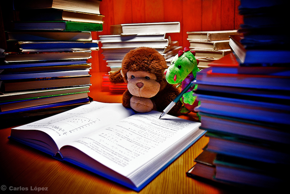 A dragon (milusk and a monkey Jimmy  working together to solve a problem