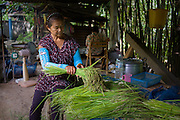 Making Green (or early) Rice, Nakhon Nayok, Thailand.