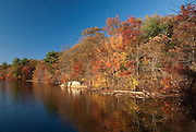 Brilliant fall colors in Breakheart Reservation, Saugus, Massachusetts