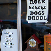Cats Rule - Dogs Drool sign in window of Ballard Time clock shop, Seattle, Washington