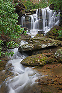 Cane's Branch snakes around boulders and rhodendron thickets, winding it's way toward the precipitous drop of Cathedral Falls.