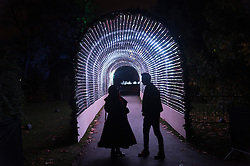 © Licensed to London News Pictures. 22/11/2016. A tunnel filled with streaming light at the Christmas Lights Festival at Kew Garden. London, UK. Photo credit: Ray Tang/LNP