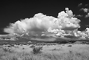 Cumulous Cloud build up over the Chiricahua Mountain, Arizona
