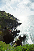 Lizard Point rocks