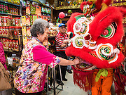 """08 FEBRUARY 2016 - BANGKOK, THAILAND: The owner of a Chinese grocery makes an offering to a lion dancer who performed in her shop in Bangkok's Chinatown district during the celebration of the Lunar New Year. Chinese New Year is also called Lunar New Year or Tet (in Vietnamese communities). This year is the """"Year of the Monkey."""" Thailand has the largest overseas Chinese population in the world; about 14 percent of Thais are of Chinese ancestry and some Chinese holidays, especially Chinese New Year, are widely celebrated in Thailand.       PHOTO BY JACK KURTZ"""