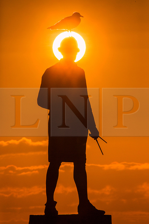 © Licensed to London News Pictures. 18/07/2018. Whitby UK. A bird sits on top of the Captain Cook memorial in Whitby as the sun rises on the Yorkshire coast this morning & the UK prepares for another hot day. Photo credit: Andrew McCaren/LNP