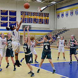 Staff photos by Tom Kelly IV<br /> East's Kennedi Van Eyken (4) puts up a shot over Shanahan's Kristen Habbel (15) during the Bishop Shanahan at Downingtown East girls basketball game, Thursday night December 18, 2013.