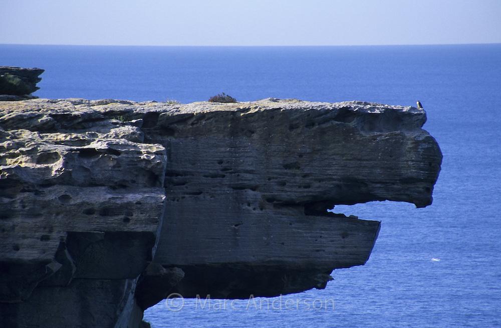 Eagle Rock, Royal National Park, Australia.