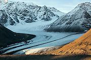It looks like Zorro has been to Spitsbergen :-) From Kongsfjorden | Det kan se ut som også Zorro har vært en tur i Kongsfjorden på Svalbard.