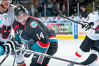 KELOWNA, CANADA - OCTOBER 22: Rourke Chartier #14 of the Kelowna Rockets looks for the puck against the Calgary HItmen on October 22, 2013 at Prospera Place in Kelowna, British Columbia, Canada.   (Photo by Marissa Baecker/Shoot the Breeze)  ***  Local Caption  ***