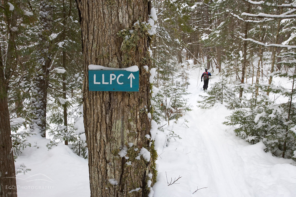 Skiing a trail near the AMC's Little Lyford Pond Camps in Maine's Northern Forest.  Near Greenville.