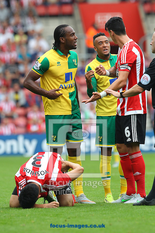Tempers flare during the Barclays Premier League match at the St Mary's Stadium, Southampton<br /> Picture by Paul Chesterton/Focus Images Ltd +44 7904 640267<br /> 30/08/2015