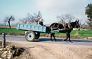 Man riding horse and cart in rural area in Portugal, 1980s unknown location