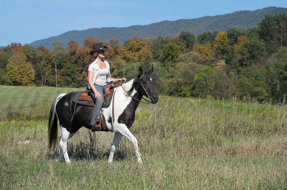 Woman horseback riding in open grassy field on a paint horse wearing western clothing and cowboy hat, a sunny summer day in the countryside of Pennsylvania, PA, USA.