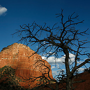 Sedona straddles the county line between Coconino and Yavapai counties in the northern Verde Valley, Arizona. Sedona's main attraction is its array of red sandstone formations that appear to glow in brilliant orange and red when illuminated by the rising or setting sun. It was named after Sedona Arabella Miller Schnebly (1877&ndash;1950)<br />