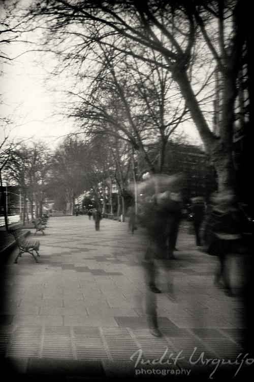 Parade of shadows returning home