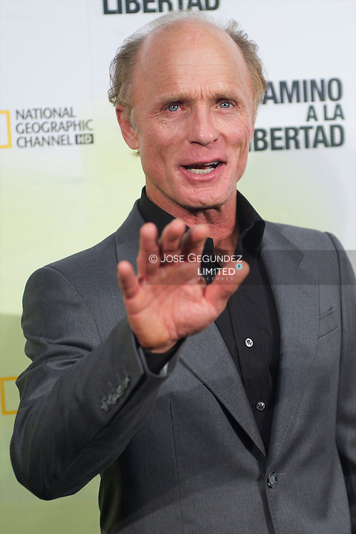 US actor Ed Harris poses during the premiere of 'The way back' at Capitol Cinema in Madrid