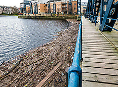 Water of Leith rubbish, Edinburgh, 5 December 2019