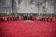 NOV 11 2014 Final Poppy to be planted at Tower of London