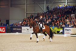 Van Grunsven Anky - Krack C<br /> KWPN Hengstenkeuring 2008<br /> Photo © Hippo Foto