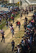 The arrival and gathering of the bulls to the arena