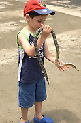 young boy of five, holding a snake