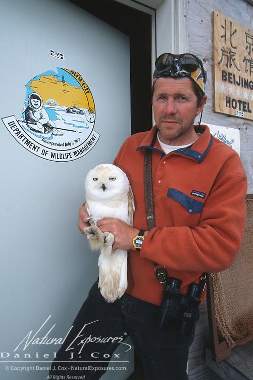 Denver Holt with an injured Snowy Owl (Bubo scandiacus) adult male. Barrow, Alaska