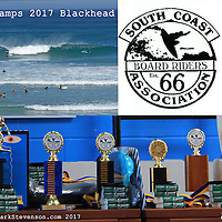 surfing comps 2017