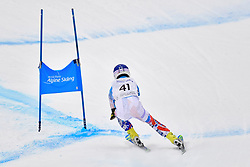 Downhill, FRANCE Martin, LW9-1, SVK at the WPAS_2019 Alpine Skiing World Championships, Kranjska Gora, Slovenia