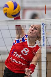 10-12-2016 NED: VC Sneek - Sliedrecht Sport, Sneek<br /> Sneek wint met 3-0 van Sliedrecht Sport / Anniek Siebring #8 of Sneek
